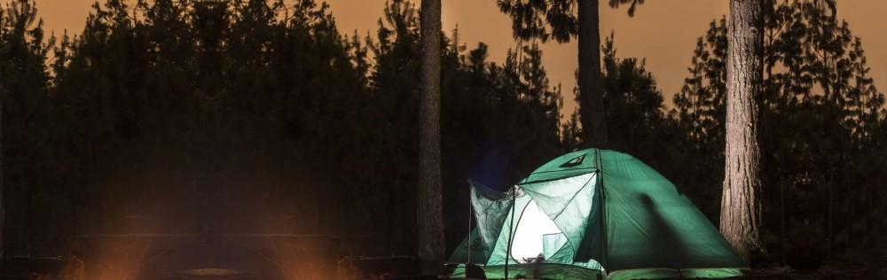 moskitoschutz effektiv gegen moskitos sch tzen. Black Bedroom Furniture Sets. Home Design Ideas